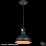 08049-0.9-01 BK светильник потолочный