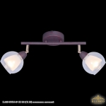 IL6619-2WIN-69 GD RS (CR RS) светильник спотовый